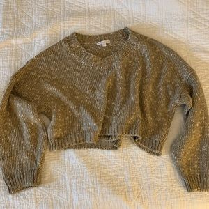 NWOT American Eagle Cropped sweater, oatmeal color
